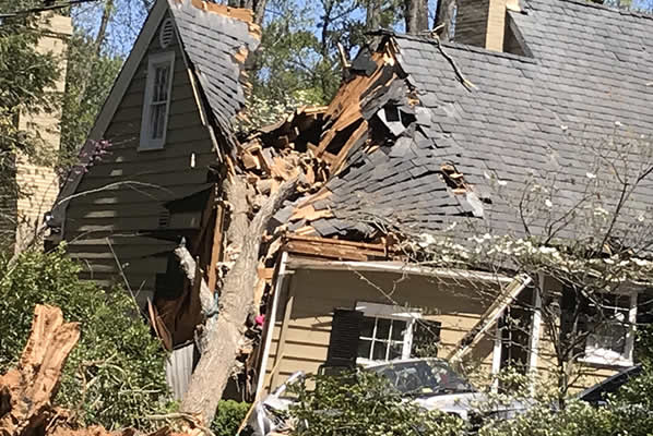 Wind Damage New Jersey Public Adjuster