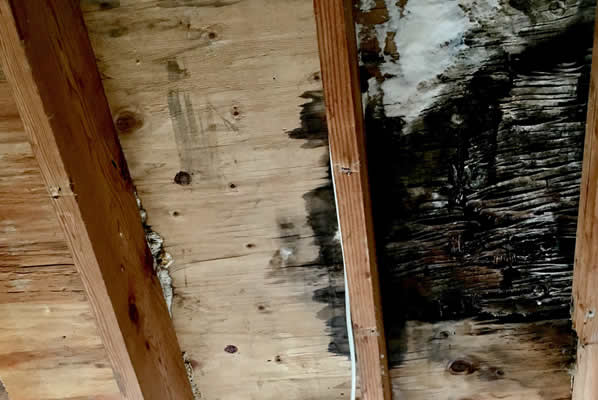 New Jersey Water Damage Public Adjuster